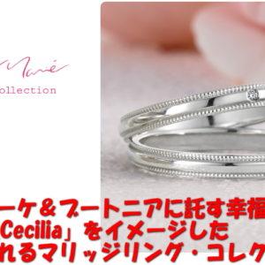 秋ドラマ、米倉涼子さん主演のドラマでプチマリエのマリッジリングが使用されています。
