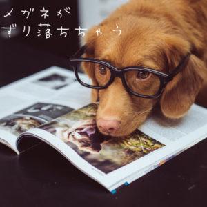 メガネがズレ落ちてきてしまうんだが?[保存版]